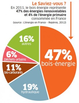 le-bois-energie-cest-47-des-energies-renouveables-en-france-e1375091850941